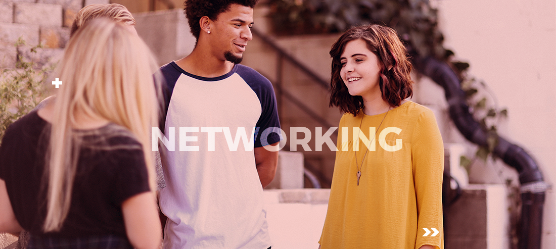 como fazer networking