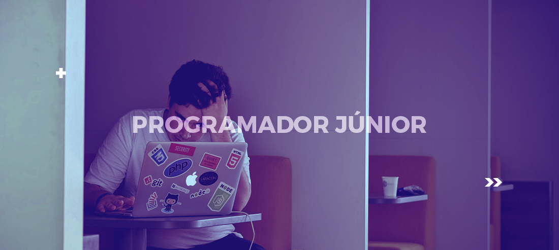 programador junior