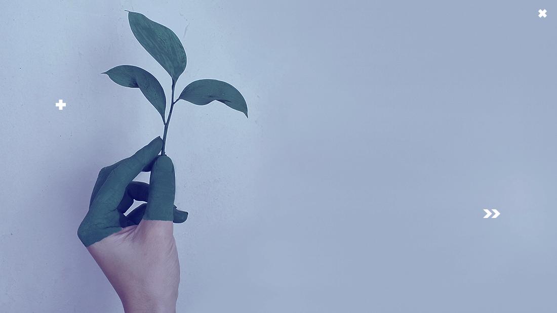 design sustentável